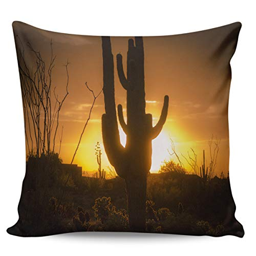 Rocking Giraffe Decorative Pillow Case Cactus Sunset Western No Man's Land Square Cushion Cover Super Soft Satin Fabric Pillowcase for Home Couch Sofa Bed 26 x 26 Inch 65 x -