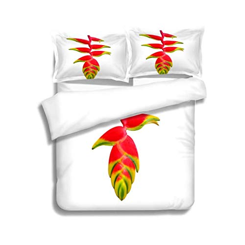 VROSELV-HOME Cotton Bedding Sets,Heliconia rostrata Also Known as Hanging Lobster Claw or False Bird of Paradise Orchid Bedding Set for Teen 3PCS