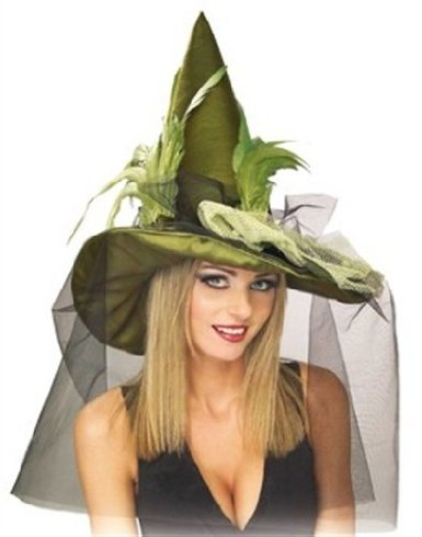 Rubie's Costume Co Grn Witch with Feathr& Veil Costume