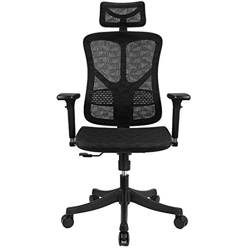 Argomax Ergonomic Mesh Office Chair High Back with Adjustable Headrest/Tilt Back/Tension/Lumbar Support/3D Armrest/Seat High End Argomax Computer Desk Chair 360 Swivel Self (Classic)