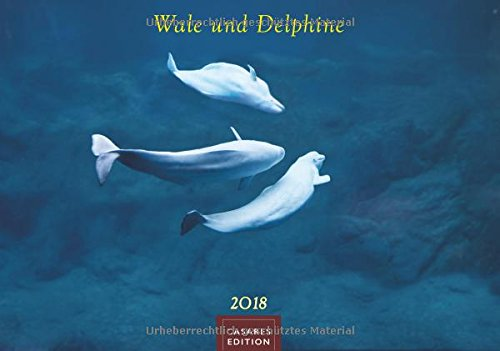 Wale und Delphine 2018