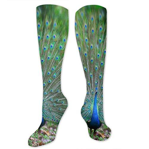 Stretch Socks Peacock - Dream Meaning Fabulous Winter Warmth for Women & Men Flight