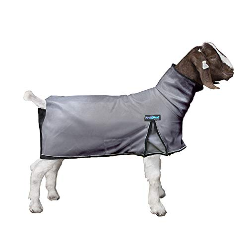 - Weaver Leather ProCool Goat Blanket with Reflective Piping, Large, Gray