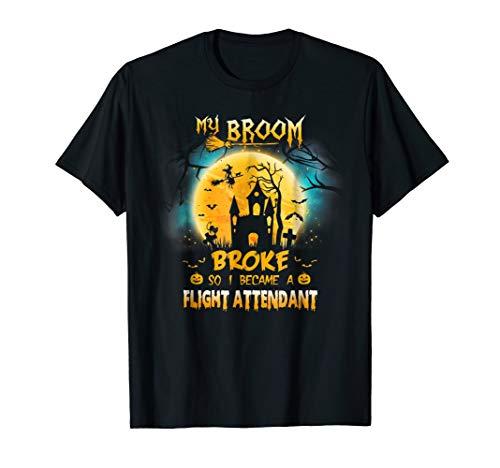 My Broom Broke So I became Flight Attendant