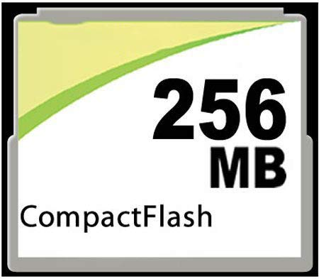 MemoryMasters 256MB CompactFlash Card - Standard Speed (p/n CF-256MB)