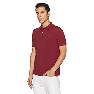 Allen Solly Men's Polo 8 419iZE8m6iL. SS300