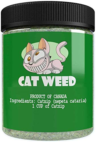 (Cat Weed Catnip has Maximum Potency Premium Blend Nip That Your Cats to Go Crazy Over (1 Cup))