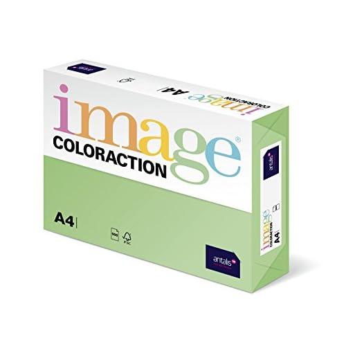 Coloraction Antalis 838A 120S 23 Papier A4 120 g/m² Vert (Import Allemagne)