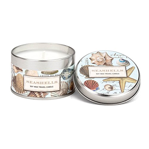 Michel Design Works Soy Wax Candle in Travel Tin Size, ()
