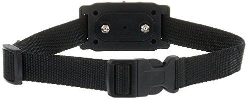 Best Aleko Bark Collars For Dogs - ALEKO TS-BC53 Anti Bark Dog Collar