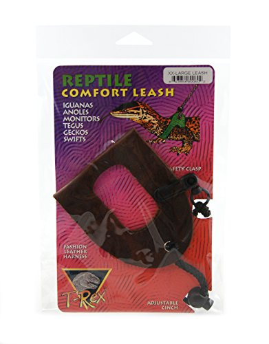 T-Rex Comfort Leash (Extra Extra - Mail How Priority Is Shipping Long