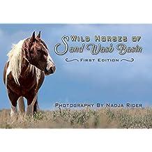 Wild Horses of Sand Wash Basin
