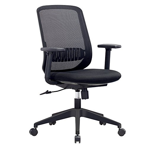 Mid Back Ergonomic Chrome Frame (Mesh Office Chair, IntimaTe WM Heart Comfortable Ergonomic Midback Home Office Swivel Computer Desk Chair with Lumbar Support and Adjustable Armrest)