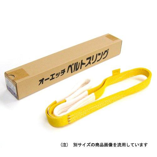 オーエッチ工業 ベルトスリング アピックス3E(両端アイ形) 黄 幅75mm×長さ3.0m (3E-NS75-30) B00N3MIMEI