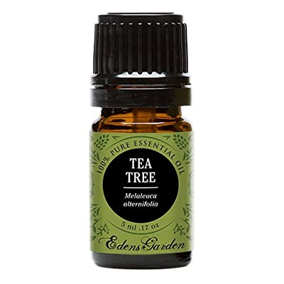 Tea Tree (Melaleuca) 100% Pure Therapeutic Grade Essential Oil by Edens Garden