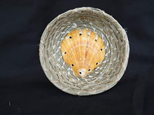 Pine Needle Scallop Shell BASKET