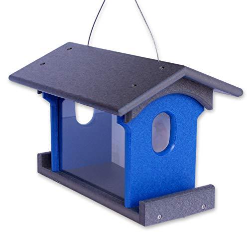 - Amish-Made Bluebird Feeder, Eco-Friendly Poly-Wood Hanging Blue Bird Feeder (Gray and Blue)