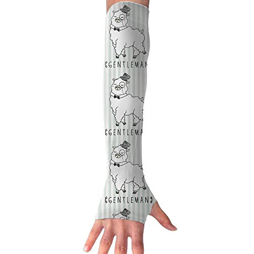 (Gentleman Alpaca UV Sun Protective Outdoors Stretchy Cool Arm Sleeves Warmer Long Sleeve Glove)