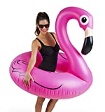Toys : BigMouth Inc Pink Flamingo Pool float, inflates to over 4ft. wide