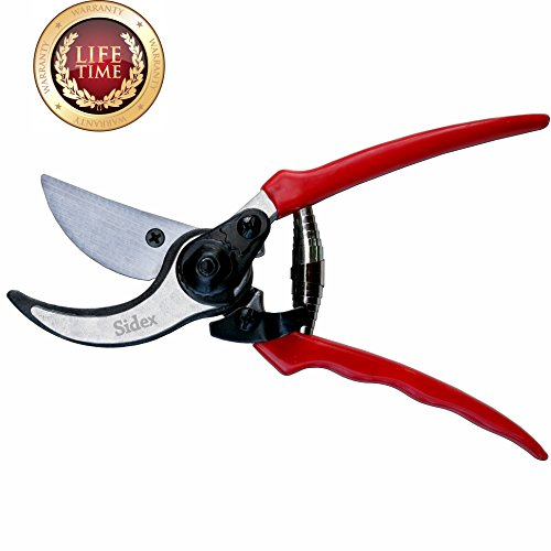 Sidex - Classic Garden Shears - Hand Pruning Tree and Hedge Scissors, Bypass Shear with Safety Lock (Tree Pruning Ficus)