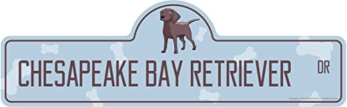 Chesapeake Bay Retriever Street Sign | Indoor/Outdoor | Dog Lover Funny Home Décor for Garages, Living Rooms, Bedroom, Offices | SignMission Personalized Gift | 18