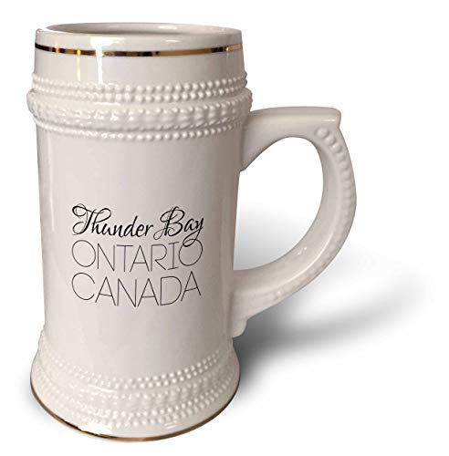 3dRose Alexis Design - Canadian Cities - Thunder Bay Ontario, Canada. Chic, unique patriotic home town gift - 22oz Stein Mug (stn_304853_1)
