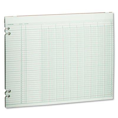 Accounting Sheets, 10 Columns, 11 x 14, 100 Loose Sheets/Pack, Green, Sold as 100 Sheet