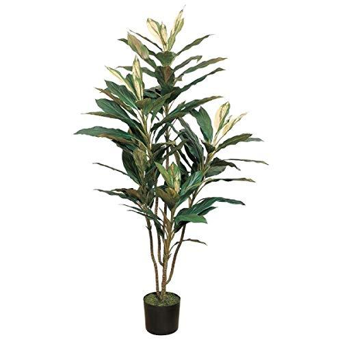 人工観葉植物 コルディリネプラント5F 高さ150cm fg13669 (代引き不可) インテリアグリーン 造花 B07SW96PHJ