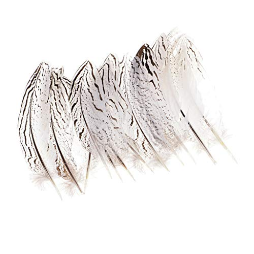 - 12Pc Natural Pheasant Wing Feathers for Wedding Millinery Art Craft Clothing