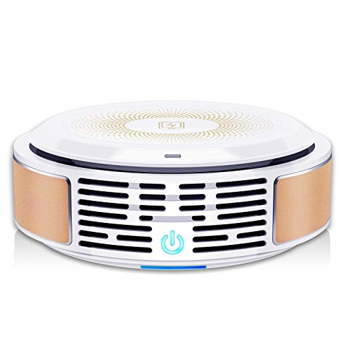 Air Purifier with True HEPA Filter, 3-in-1 Air Cleaner, Portable & Quiet, Eliminates Pollen, Dust, Pet Dander, Smoke, Mold, Germs, Odor Cleaner, for Allergies/Home/Office/Car/Pet Owner/Smoker