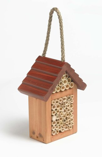 Happy Bee Box - Wildlife Lodge