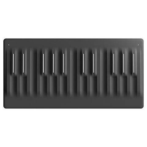 ROLI Seaboard Block Controller (Musical Instruments & Accessories)