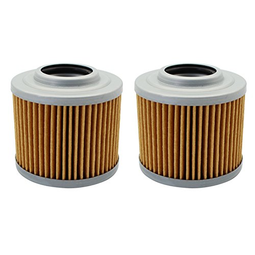 Cyleto Oil Filter for BMW G650X MOTO / G650 X COUNTRY 650 2007-2010 / G 650 X CHALLENGE 2007-2011 (Pack of 2)