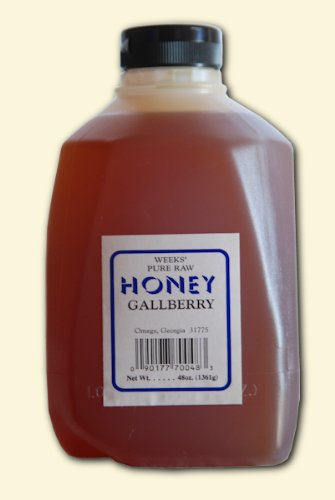 Honey Jug (48oz (3lb) - Gallberry Honey - Pure, Raw, Unfiltered, Unheated)