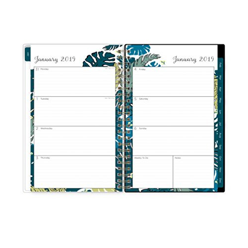 Large Product Image of Blue Sky 2019 Weekly & Monthly Planner, Flexible Cover, Twin-Wire Binding, 5