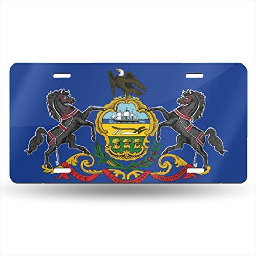 Amazon.com: CARPLATE98 Pennsylvania Customized Personalized ...
