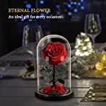 Beauty-and-The-Beast-Rose-Handmade-Preserved-Fresh-Rose-in-Glass-Dome-with-Gift-Package-Romantic-Forever-Gift-Unique-Gifts-for-Women-Valentines-Day-Christmas-Wedding-Birthday-Gifts