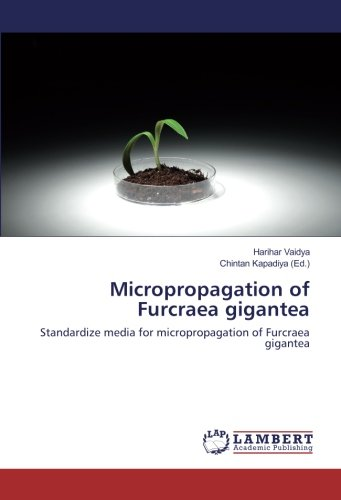 Micropropagation of Furcraea gigantea: Standardize media for micropropagation of Furcraea gigantea