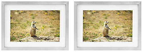 Golden State Art Two 5x7 Picture Frames - Silver Aluminum (Shiny Brushed) - Fit Photo 4x6 with Ivory Mat or 5x7 Without Mat - Metal Frame Real Glass (5x7, Set of 2, Silver)