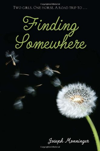 Download Finding Somewhere pdf