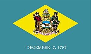 Annin Delaware State Flag