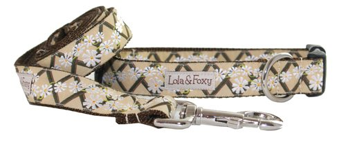 Lola & Foxy Khaki Ranch 1-Inch Wide Dog Collar, X-Large, Khaki