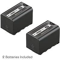 Kastar Battery 2 Pack for Panasonic AG-VBR59 AG-VBR89G AG-VBR118G AG-BRD50 AG-B23 & AG-DVX200 AG-AC8 AG-AC90A AG-DVC30 AG-HPX250 AG-HPX255 AG-HVX201 AJ-PX230 AJ-PX270 AJ-PX298 AJ-PG50 HC-MDH2 HC-X1000