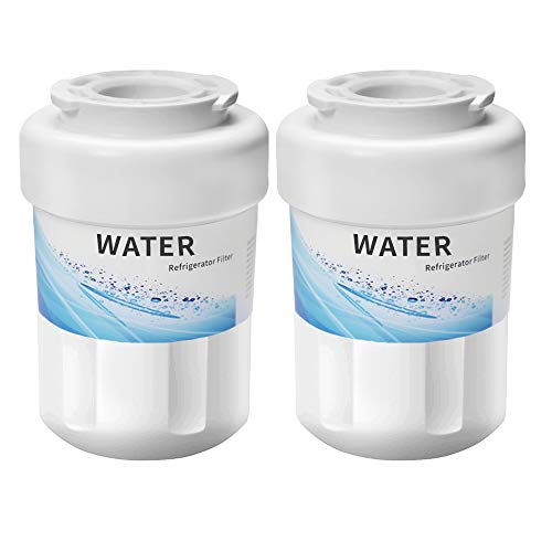 CLANORY MWF Refrigerator Water Filter, MWF Water Filter for GE Refrigerator (2 Pack)