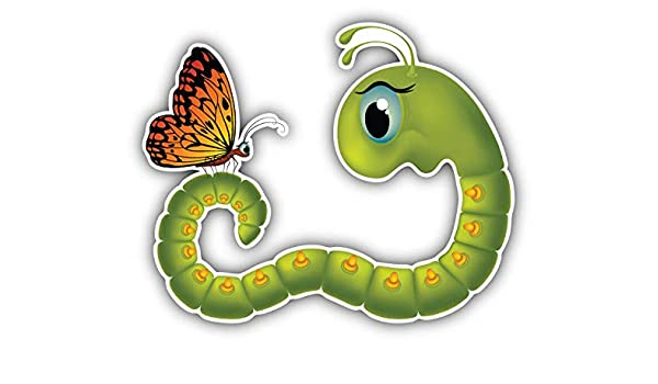 Amazon Com Goggle Eyed Caterpillar Butterfly Cartoon Window Truck Car Bumper Sticker Decal 5 X 4 Home Kitchen