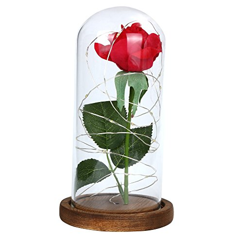 Star_wuvi Beauty and The Beast Red Rose kit Enchanted and Led Light with Fallen Petals in Glass Dome on Wooden Base Gift for Valentine's Day Christmas Home Decor Party Wedding Anniversary (Brown)