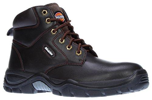Newark Boot Arbeid Fa9003 Farger Dickies Svart 3 dEqOdZ