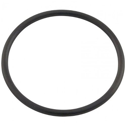 Pentair 071426 Collar and Rotor Union O-Ring Replacement (Rotor O-ring)