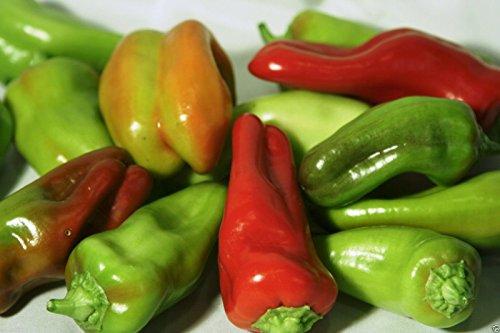 Pepper Cubanelle - Pepper Sweet,- Cubanelles Or Italian Sweet Frying Pepper, 50 Organic Seeds