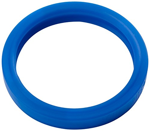 Pool Patch ABSSSG Sub Seal Silicone Spa Light Gasket for Pentair Spabrite/Aqualight, 4-Inch